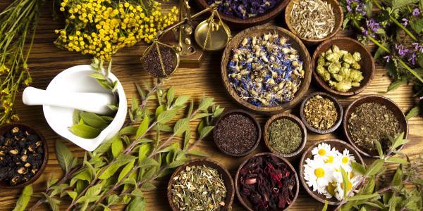 Poznaj ziołową pielęgnację