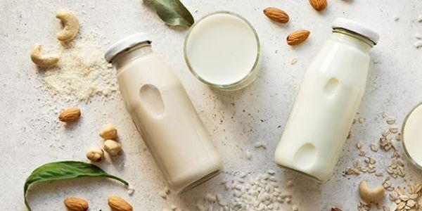 mleko roślinne bez laktozy