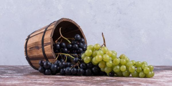 Winogrona >>