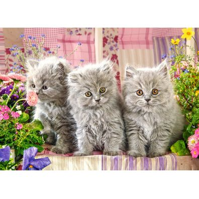 Puzzle 260 Three Grey Kittens